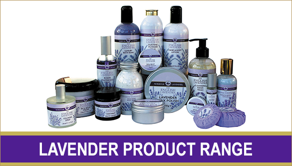 Product_Lavender