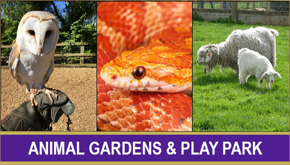 animal_gardens_button