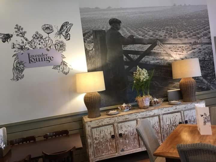 nl-lavender-lounge